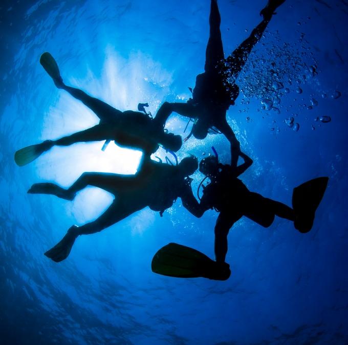 Diving_162542854
