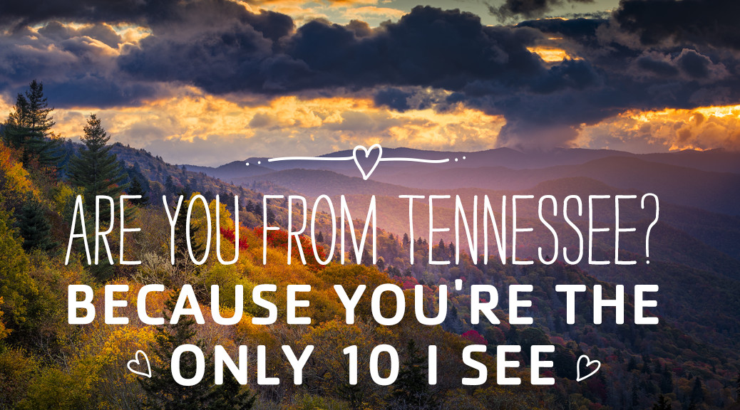 pick-up-lines-1038x576 tennessee