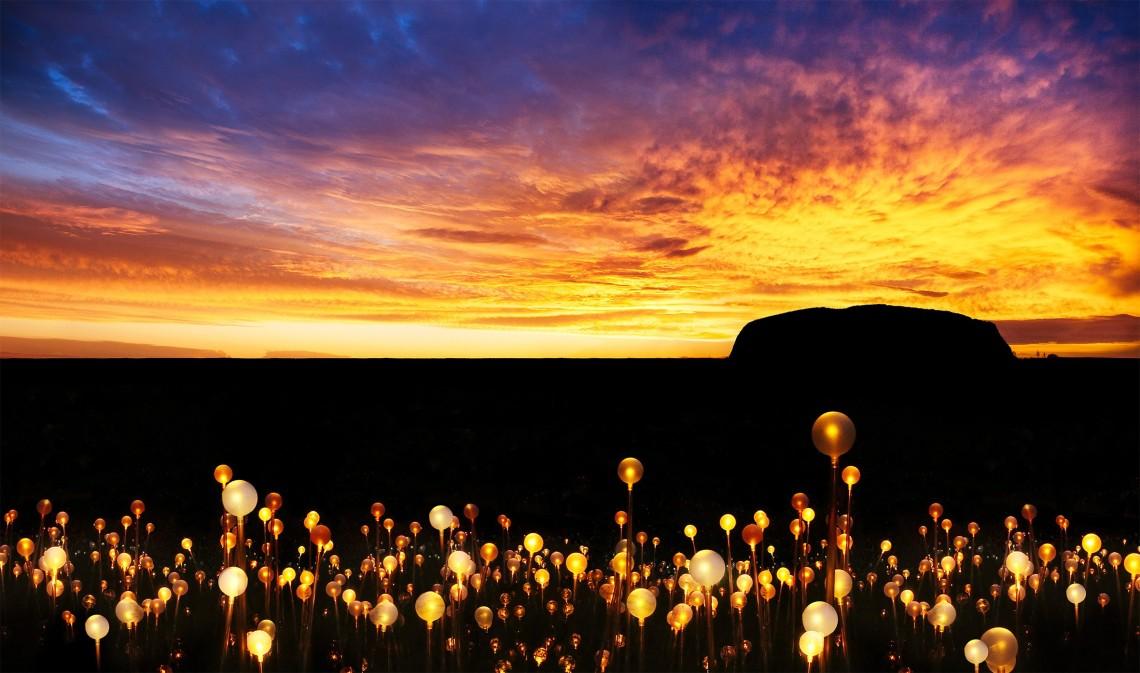 field of light.jpg